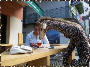 Parade de rue La girafe a bien soif