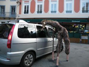 La girafe et la voiture déambulation échassier en Aquitaine