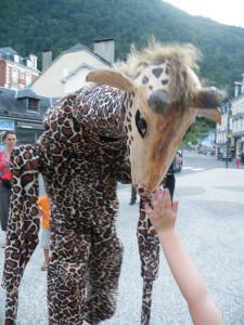 Toucher la girafe échassières En Gironde
